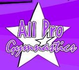 All Pro Gymnastics and Cheerleading Camp