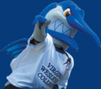 Blue Marlin Summer Baseball Camps