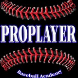 Academy of Pro Players Baseball & Softball Camps