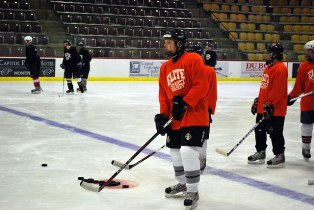 Elite Hockey Training Camps