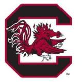 University of South Carolina Football Camp